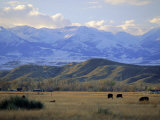 Looking West Towards the Rocky Mountains from Big Timber, Sweet Grass County, Montana, USA Photographic Print by Robert Francis