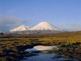 Volcan Parinacota and Volcan Pomerape, Lauca National Park, Chile, South America Photographic Print by Rob Mcleod