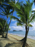 Palm Cove, with Double Island Beyond, North of Cairns, Queensland, Australia Photographic Print by Robert Francis