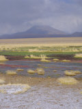 River Putana, Futuro National Park, San Pedro De Atacama, Chile Photographic Print by Rob Mcleod