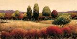 Vista Prints by James Wiens