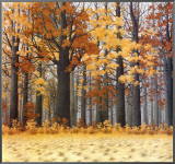 Autumn Wood Framed Canvas Print by Arzt