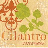 Cilantro Art by Bella Dos Santos