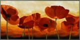 In the Sun Framed Canvas Print by Andrea Kahn