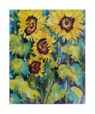 Sunflowers Prints by Fay Powell