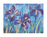 Irises Prints by Lisa V. Keaney