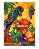 Parrot Poster von Gemma Cotsen