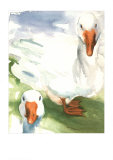 Geese Print by Paula W. Patterson