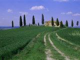 House and Cypress Trees, Val d'Orcia, Province of Siena, Tuscany, Italy, Europe Photographic Print by Bruno Morandi