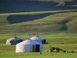 Nomads' Camp, Terkhin Valley, Arkhangai, Mongolia Photographic Print by Bruno Morandi