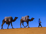 Camel Train Through Desert, Morocco, North Africa Photographic Print by Bruno Morandi