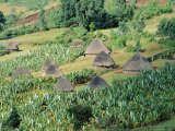 Small Village in Hosana Region, Shoa Province, Ethiopia, Africa Photographic Print by J P De Manne