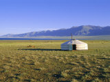 Nomad Camp, Uureg Nuur Lake, Uvs, Mongolia Photographic Print by Bruno Morandi