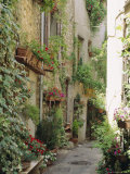 Mougins, Alpes Maritime, Cote d'Azur, Provence, France Photographic Print by J P De Manne