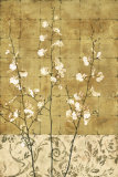 Blossoms in Gold II Prints by Chris Donovan