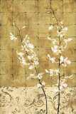 Blossoms in Gold I Prints by Chris Donovan