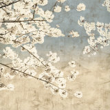 Cherry Blossoms II Poster by John Seba