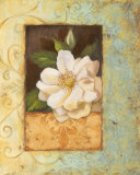 Antique Rose II Print by Jillian Jeffrey