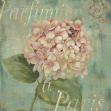 Vintage Fragrance IV Posters par Daphne Brissonnet