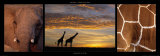 Giraffes at Dusk Print by Michel &amp; Christine Denis-Huot