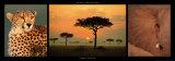 African Savannah Poster autor Michel & Christine Denis-Huot