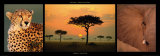 African Savannah Poster von Michel & Christine Denis-Huot