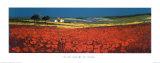 Red Fields, Tuscany Lámina por John Horswell