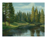 Forest Lake Giclee Print by David Johnson