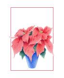 Poinsettia Giclee Print by Mariana Musa