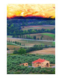 Morning on Tuscany Photographic Print by Richard Duval