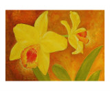 Two Yellow Orchids Giclee Print by Thi Nguyen
