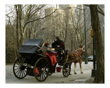 Carriage in the Park Photographic Print by  Dw Labs