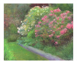 Aisle of Rhododendrons Giclee Print by Jacquie Gouveia