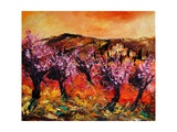 Blooming Cherry Trees In Provence Giclee Print by  Ledent