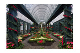 French Indoor Garden Photographic Print by George Oze