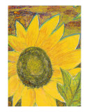 Sunflower Oil Yellow Painting Giclee Print by Derek Mccrea