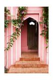 Garden Door Photographic Print by George Oze