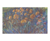 Field of Wild Poppies Giclee Print by Dodie Mccandless
