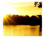 Local Park Sunset Autumn Afternoon Photographic Print by Karloss Scaplehorn