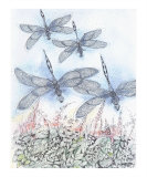 Dragonflies In The Field Giclee Print by Pirkko Ahonen
