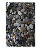 Wet Stones Photographic Print by Elena Ray