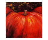 Autumn Pumpkins Giclee Print by Nadine Rippelmeyer