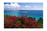 Frenchmans Bay Panorama St Thomas USVI Photographic Print by George Oze