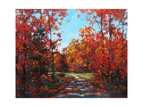 Autumn Walk in the Hudson Valley Giclee Print by Patty Baker