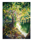 Barton Creek Giclee Print by Billie Harkrider