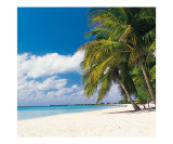 Classic Seven Mile Beach Photographic Print by Anne Flinn Powell