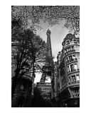 Looming Eiffel Tower Photographic Print by Andrew Fare