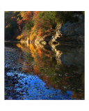 Fall Reflection Photographic Print by Anna Maria Miller