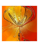 Flower II Photographic Print by Ben & Raisa Gertsberg