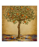 Orange Tree Giclee Print by Barbara Gerodimou